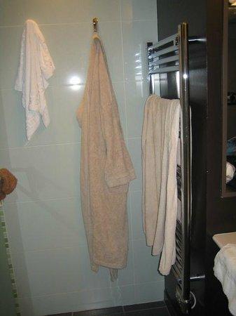 Le Rabelais Hôtel -Restaurant -SPA : Vue salle de bain