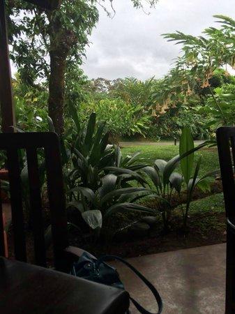 Casa Luna Hotel & Spa: Breakfast View