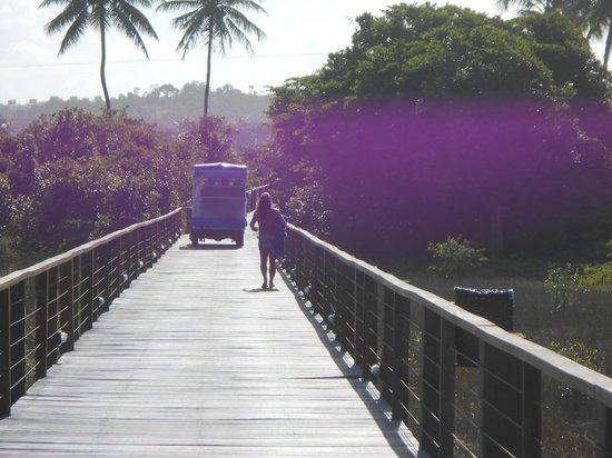 Grand Palladium Imbassai Resort & Spa: Regressando da praia