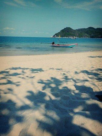 Thong Nai Pan Noi : Bliss