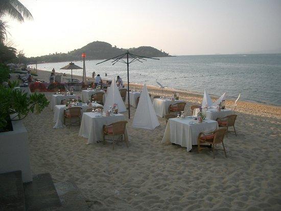 "Bo Phut Resort & Spa: Themenabend am Strand ""Lobster und Austern"""