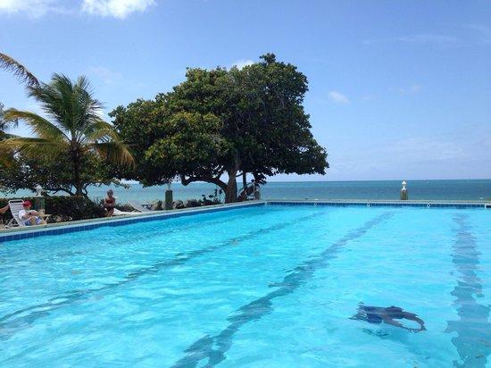 Tamarind Reef Resort, Spa & Marina: Bar side pool 4-5ft. Great view!