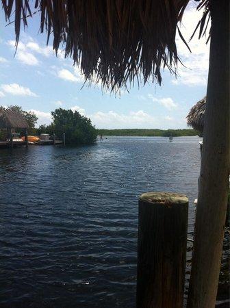 Key Largo Kampground and Marina: Great campground!