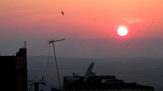 Dar Zerhoune : tramonto dalla terrazza