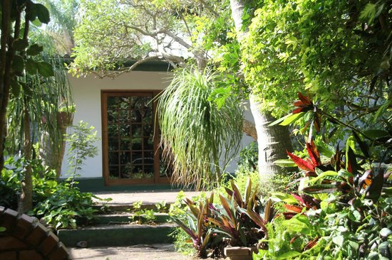 Igwalagwala Guest House: Garden