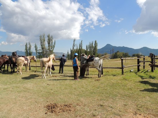 Bokpoort Cowboy Ranch: Getting ready for an outride into the Maluti Mountains