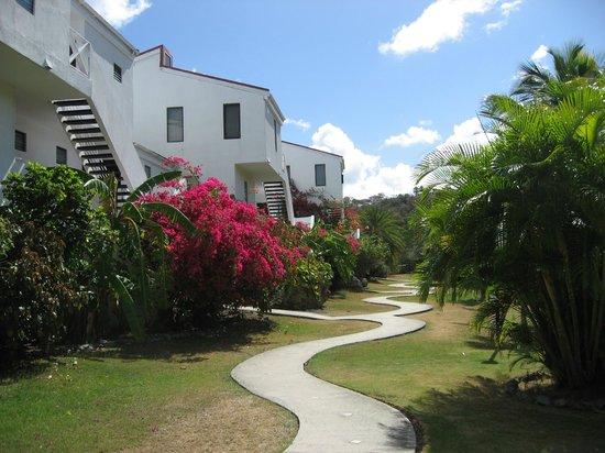 Coconut Beach Club: Rear of the Hotel