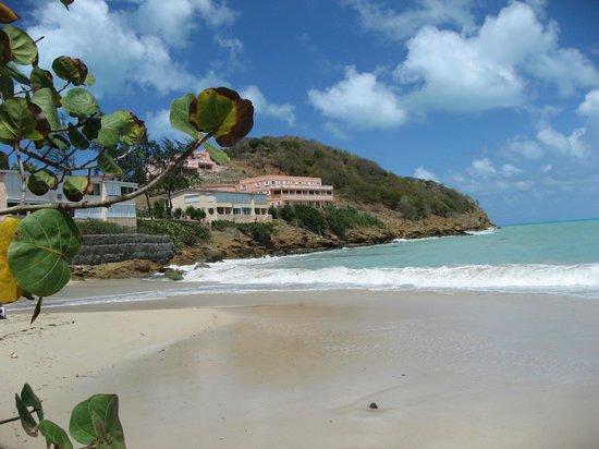 Coconut Beach Club: Busy beach!