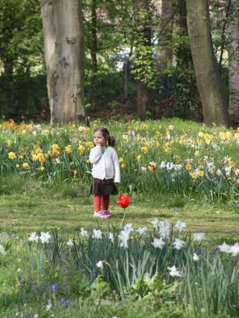 Floralia - Spring Flower Show: A Child's Delight