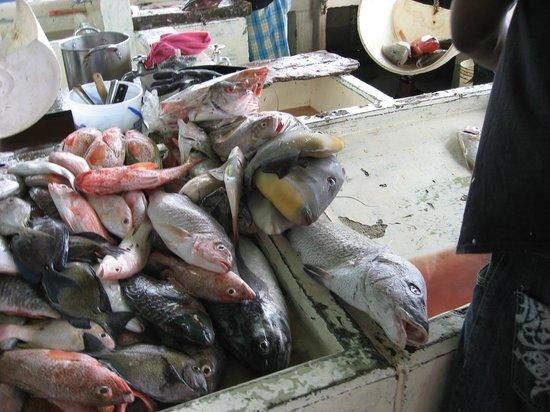 Coconut Beach Club: Amazing Fish Market