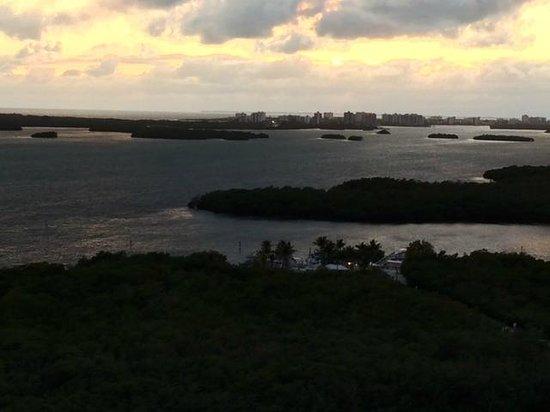 Hyatt Regency Coconut Point Resort and Spa: View from Room 1625