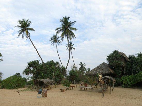 Cinnabar Resort form beach