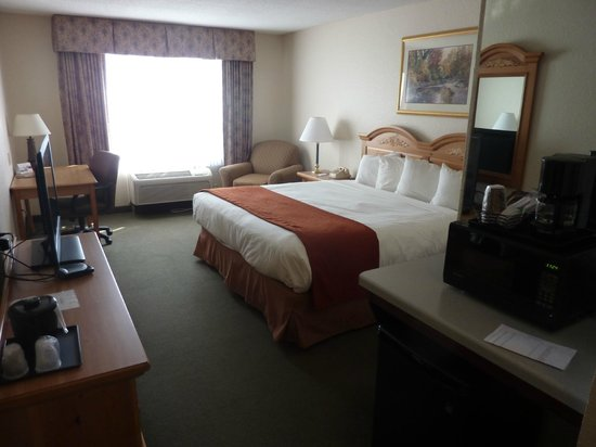 Country Inn & Suites by Radisson, Platteville, WI: standard room with king size bed