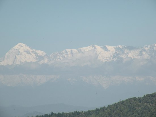 Trishul Orchard Resort : View of Himalayas from the view point in the resort