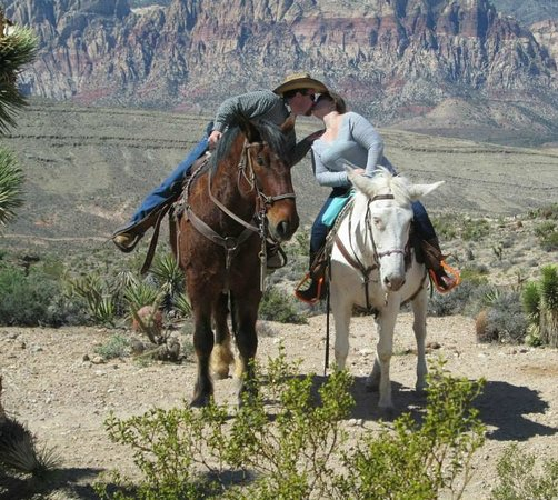 Cowboy Trail Rides, Inc. : Horse Back Kiss on our AMAZING West Rim ride.