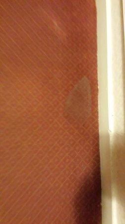 Claymore Hotel: Nice carpet........