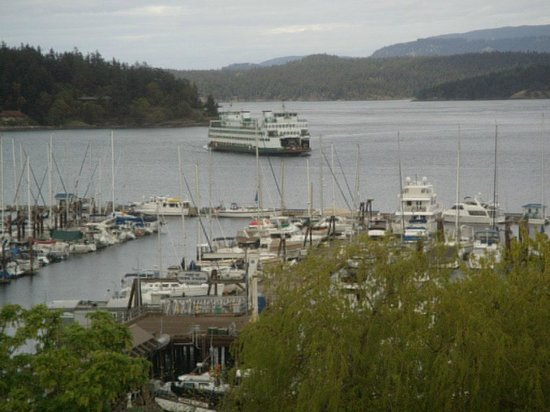Friday Harbor House : View from our room