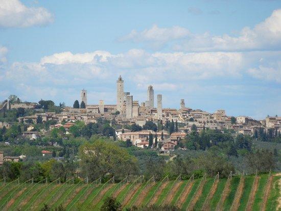 Fattoria Voltrona: San Gimignano