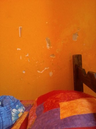Montevideo Port Hostel: Pared destruida.
