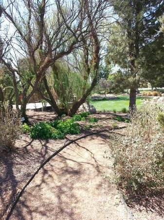Gage Hotel: Well-maintained grounds