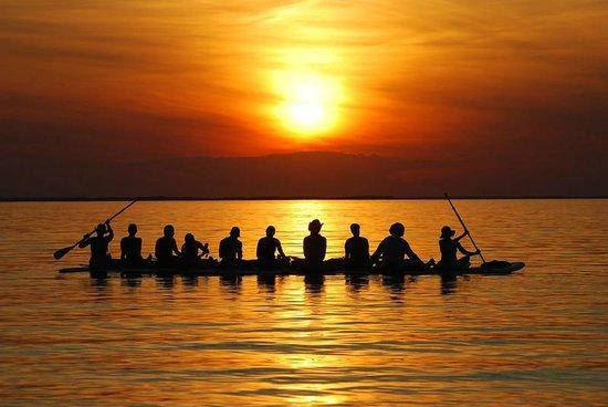 Delmarva Board Sport Adventures: SUP Yoga Retreats