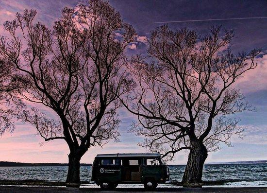 Winewagen Tours: Terrapin