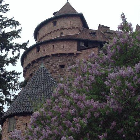 Regioscope Tours: Haut-Koenigsbourg