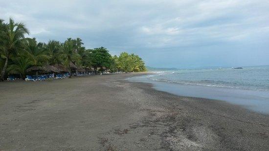 Grand Bahia Principe San Juan : Expansive private beach