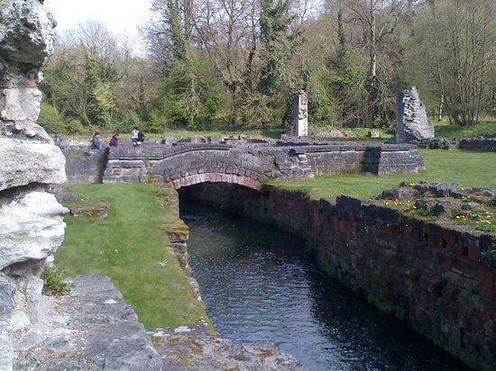 Watercourse at Roche Abbey