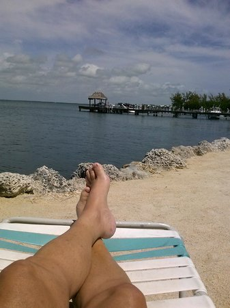 Amoray Dive Resort: Laying on their overlook area of the Gulf of Mexico