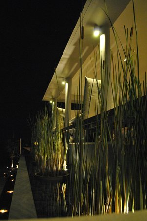 The Lombok Lodge : Some green