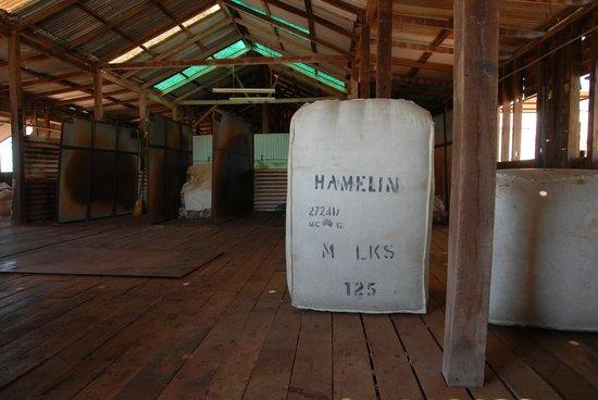 Hamelin Station Stay : Shearing shed