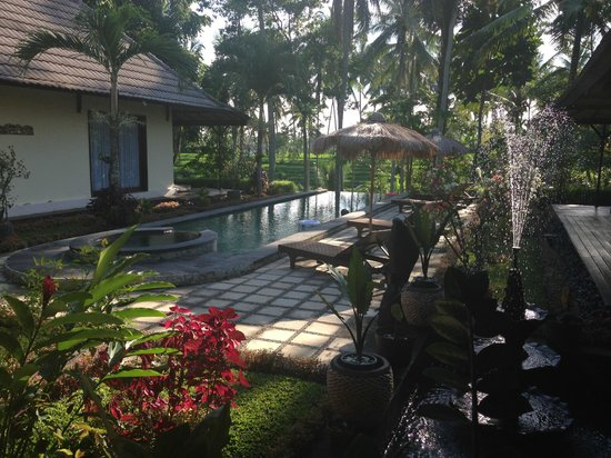 Junjungan Suite Villa : View from reception