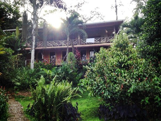 Dolphin Bay Hideaway : The hotel