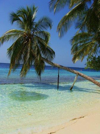 Fihalhohi Island Resort: :)