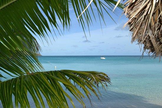 Blue Lagoon Beach Resort: Stunning sea
