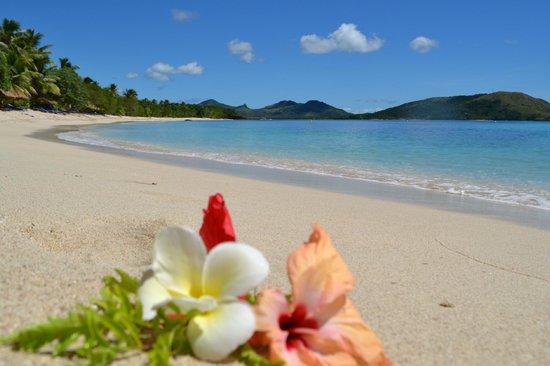 Blue Lagoon Beach Resort: Beautiful