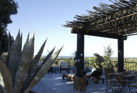 Hotel California: Penthouse Terrace