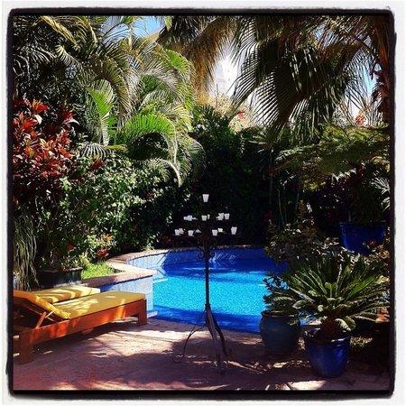 Hotel California: The Pool