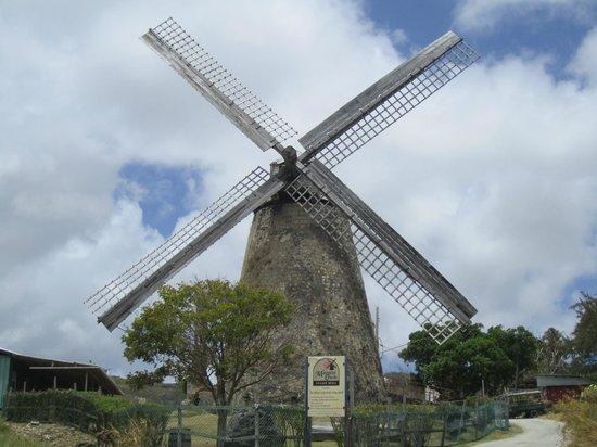 Glory Tours : Windmill