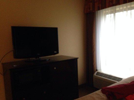 Comfort Suites Golden Isles Gateway Brunswick: TV