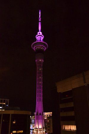 Barclay Suites Auckland : View from our room!