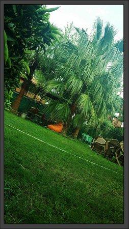 Mila Pansiyon: bahçe