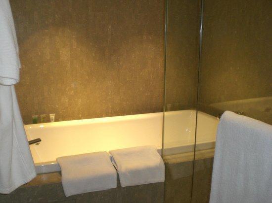 Hyatt Regency Delhi : bath tub