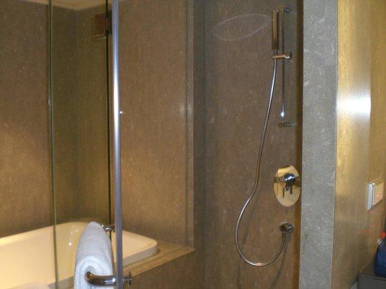 Hyatt Regency Delhi : Very powerful shower. Bliss.
