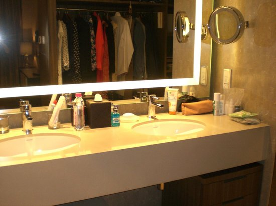 Hyatt Regency Delhi : The wardrobe was in the bathroom!