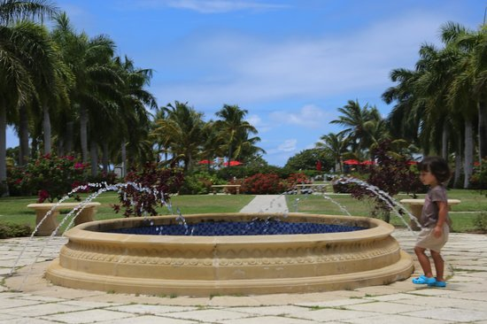 Hotel Riu Palace St Martin: Jardin del hotel