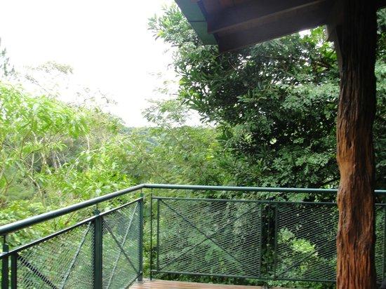 Iguazu Jungle Lodge : Balcón