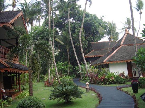 Amazing Ngapali Resort : Территория