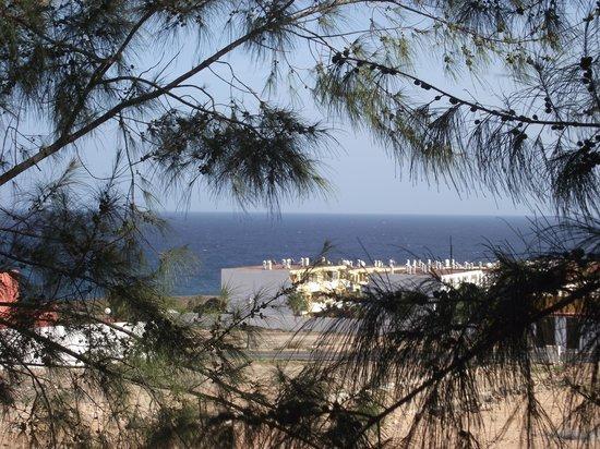 Elba Lucia Sport & Suite Hotel: View from door to room